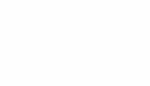 Blue Mountain Precision Logo