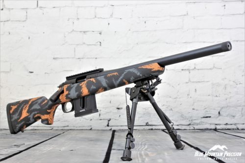 .22 LR Youth Rifle